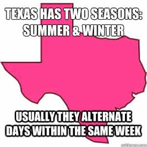 texas seasons