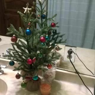 bathroom tree