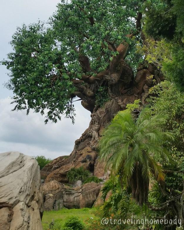 tree1 edit